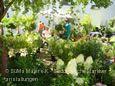 mehr zu DiGA - Das Gartenfestival