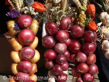 Büllefest in Iznang Moos
