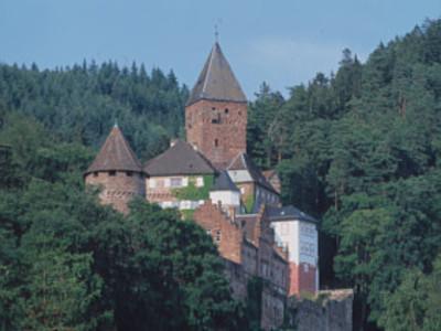 """Schlossfestspiele Zwingenberg am Neckar - """"Der Liebestrank"""""""