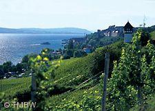 Bodensee-Weinfest Meersburg
