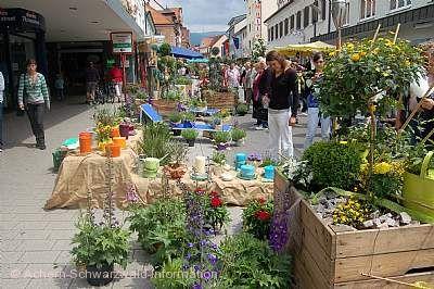 Großer Frühjahrsbauernmarkt Achern