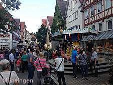 Stadtfest Münsingen