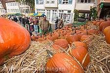 Plochinger Herbst Plochingen
