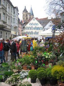 Esslinger Frühling mit Esslinger Gartentagen Esslingen am Neckar
