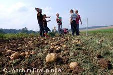 21. Kartoffelfest St. Johann (Württ.)
