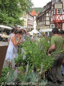 Kräutermarkt Mosbach
