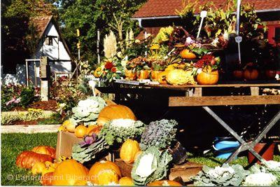 Kürnbacher Herbstmarkt Bad Schussenried