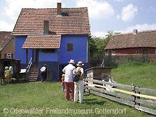 Grünkernfest - Jahresmuseumsfest Walldürn