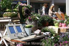 """Biosphärenmarkt - """"Messe in der Innenstadt"""" Münsingen"""