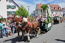 Montfortfest- Kinder-und Heimatfest Tettnang