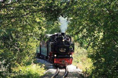 Öchsle-Bahn - Bacchusfahrt Warthausen