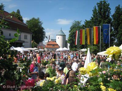 Rosenmarkt Laupheim