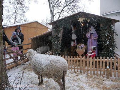 Weihnachtsmarkt Westerheim