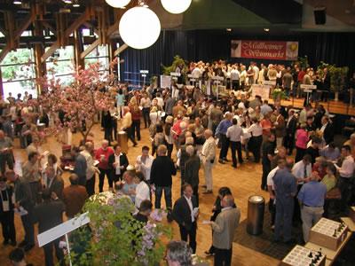 137. Müllheimer Weinmarkt