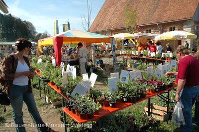 Kräuter- und Blümlesmarkt Wolfegg am 01.05.2019
