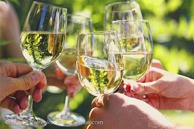 Buchholzer Wein-Testival Waldkirch