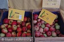 Hela und Apfelmarkt Laufenburg (Baden)