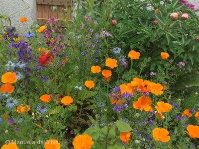Barocke Gartentage - Pflanzen, Garten & Ambiente Ludwigsburg