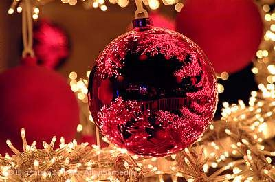 23. Brühler Weihnachtsmarkt