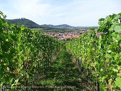 Weinfest Beuren