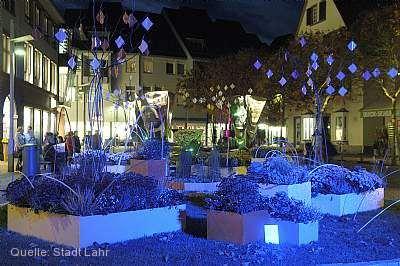 """""""Chrysanthema bei Nacht"""" Lahr / Schwarzwald"""
