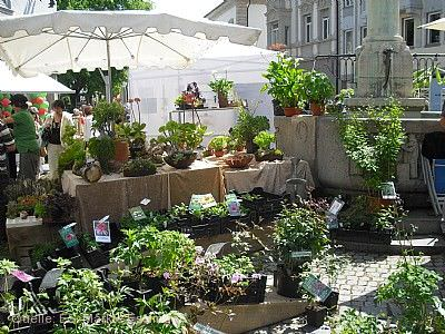 Esslinger Frühling und Gartentage Esslingen am Neckar am 25.04.2020 bis 26.04.2020