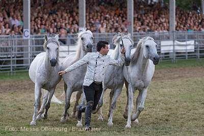 eurocheval - Europamesse des Pferdes Offenburg am 23.07.2020 bis 26.07.2020