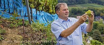 Exklusiver kulinarischer Weinabend Bad Krozingen