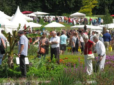 "Gartenmarkt ""Sommer - Blüten - Träume"" Rechberghausen"