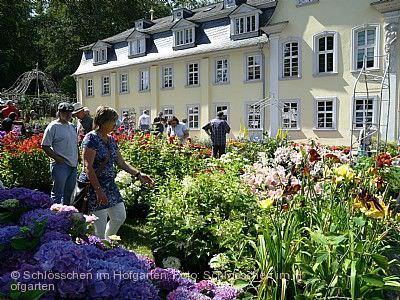 Gartenromantik im Fürstlichen Hofgarten Wertheim am 04.07.2020 bis 05.07.2020