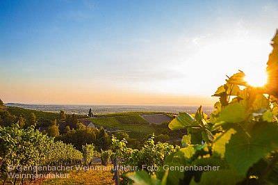 Offenburger Weinwandertag am 06.09.2020