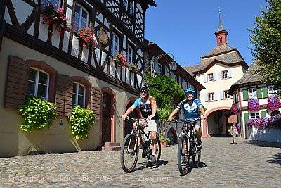 Zwiebelkuchenfest & Offener Winzerkeller Burkheim Vogtsburg im Kaiserstuhl