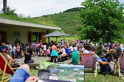 Kaiserstühler Burgundertour Vogtsburg im Kaiserstuhl