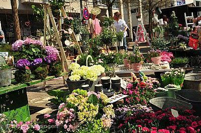Münsinger Kunst- und Gartenmarkt Münsingen