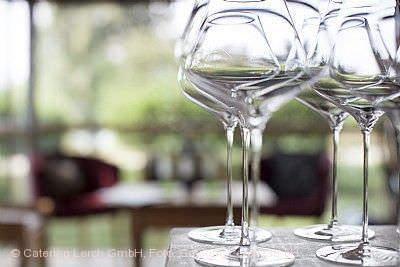 Weinsommerveranstaltung: Historische Rebsorten mit Andreas Jung Biberach an der Riß
