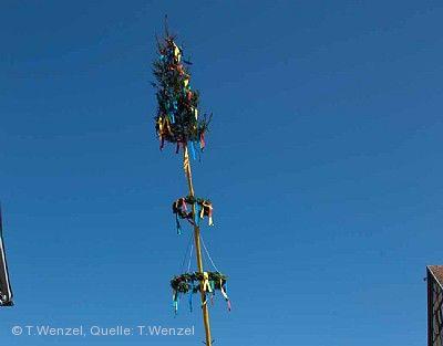 Traditionelles Maibaumaufstellen Kirchheim unter Teck