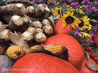 Meerrettichfest mit Spätjahrsmarkt in Urloffen Appenweier
