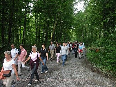 Muttergottes-Fußwallfahrt Wittighausen