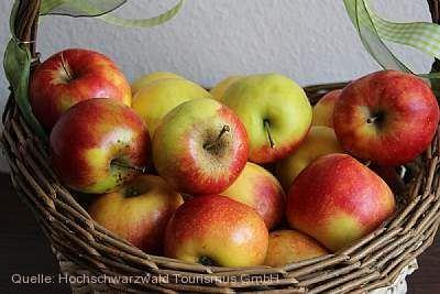 Naturpark-Markt Todtnau am 27.09.2020