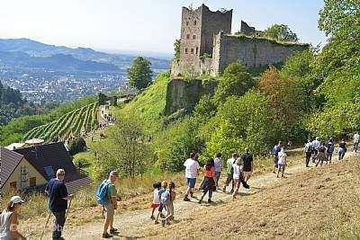 Kulinarische Weinwanderung Oberkirch am 29.09.2019