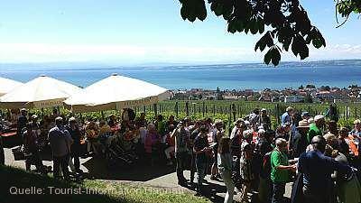 Obst- und Weinwanderwegsfest Hagnau