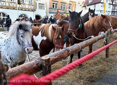 327. Pferdemarkt Leonberg am 09.02.2018 bis 13.02.2018