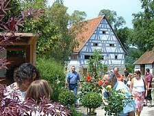 Pflanzenmarkt Schwäbisch Hall
