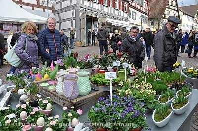 Plochinger Frühling Plochingen