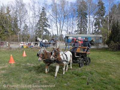 Fahr- und Jugendreitturniere des Reitvereins Bad Schussenried