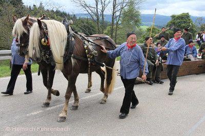 """Rossfest St. Märgen - """"Tag des Schwarzwälder Pferdes"""" Sankt Märgen"""