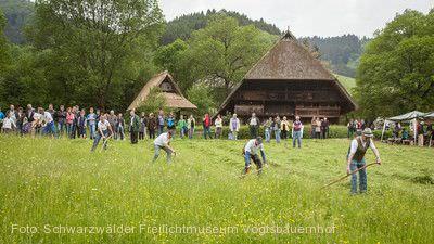 Sensen, Schleifen, Dengeln Gutach (Schwarzwaldbahn)