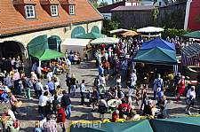 Markelsheimer Träubelesmarkt Bad Mergentheim