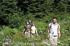 Bergwelt Todtnau Wanderwoche