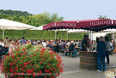 Weinerlebnis am Kappelberg Fellbach